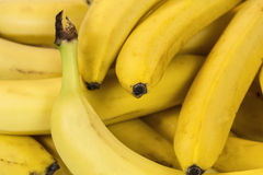 Primer del plátano Imagen de archivo libre de regalías