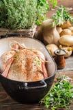 Primer del pollo con las especias y las verduras Foto de archivo