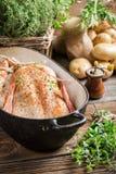 Primer del pollo con las especias y las verduras Imagenes de archivo