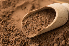 Primer del polvo de cacao en fondo de madera Imagen de archivo libre de regalías