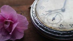 Primer del reloj de bolsillo al lado de una flor y de un paso del tiempo violetas suavemente rosados almacen de video