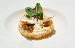 Primer del risotto con las langostas Imagen de archivo libre de regalías