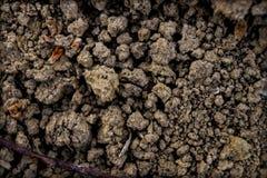 Primer del suelo de arcilla Imagen de archivo libre de regalías