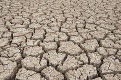 Primer del suelo seco Imagenes de archivo
