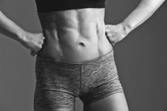 Primer del torso muscular de la mujer Imagenes de archivo