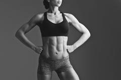 Primer del torso muscular de la mujer Imágenes de archivo libres de regalías