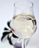 Vidrio de agua Imagen de archivo libre de regalías