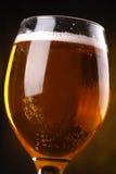 Primer del vidrio de cerveza Foto de archivo libre de regalías