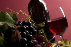 Primer del vino rojo y de la uva Fotografía de archivo libre de regalías