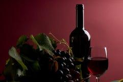 Primer del vino rojo y de la uva Imágenes de archivo libres de regalías