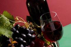 Primer del vino rojo y de la uva Fotos de archivo libres de regalías