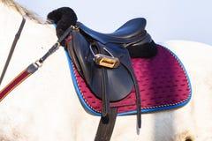 Primer ecuestre de la silla de montar del caballo Imágenes de archivo libres de regalías