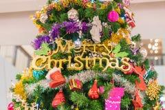 primer en el árbol de navidad Fotografía de archivo