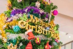 primer en el árbol de navidad Fotos de archivo libres de regalías