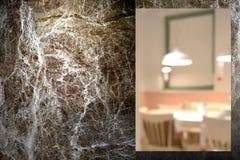 Primer en la pared de mármol al aire libre en la noche Imagenes de archivo