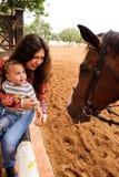 Primer encuentro con el caballo Imágenes de archivo libres de regalías