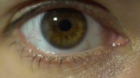 Primer extremo del ojo azul del iris y del alumno que dilatan y que contratan Muy finalmente ojo marrón femenino detallado metrajes