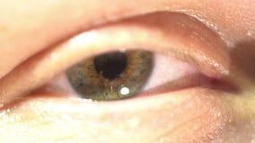 Primer extremo del ojo verde del iris y del alumno que dilatan y que contratan Muy finalmente anatomía humana detallada, centella almacen de video