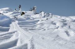 Primer fresco de la nieve Imagen de archivo libre de regalías