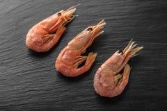 Primer fresco de los camarones de los mariscos foto de archivo