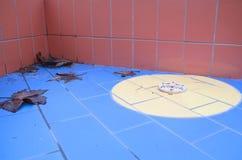 Primer fuera de temporada de la esquina de la piscina con las hojas Imagen de archivo