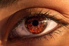 Primer hermoso del ojo de la mujer fotos de archivo libres de regalías