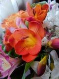 Primer hermoso del ramo de la flor con las flores coloridas Imagenes de archivo