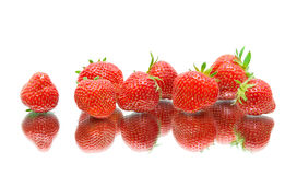 Primer jugoso de las fresas en el fondo blanco Foto de archivo