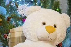 Primer lindo del oso de peluche sobre fondo del árbol de navidad que brilla Regalo de vacaciones de Navidad o del Año Nuevo fotografía de archivo libre de regalías