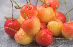 Primer más lluvioso rojo y amarillo recientemente escogido de las cerezas Fotos de archivo libres de regalías