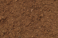 Primer macro del césped de la turba, modelo orgánico marrón detallado grande del fondo de la textura del suelo de la humus, espac Fotografía de archivo libre de regalías