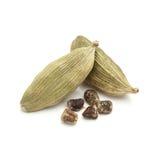 Primer macro del cardamomo verde orgánico con las semillas Imagen de archivo