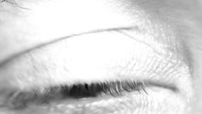 Primer macro del ojo masculino almacen de metraje de vídeo