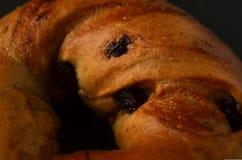 Primer macro del panecillo de la pasa del canela Foto de archivo libre de regalías