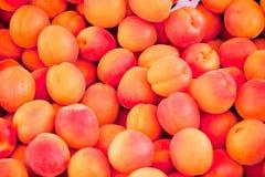 Primer macro del rojo anaranjado de los melocotones frescos de los albaricoques en mercado imagen de archivo libre de regalías