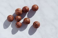 Primer maduro de las nueces de macadamia Comida sana, vitaminas imagen de archivo libre de regalías