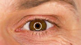 Primer masculino del ojo del centelleo hermoso Cámara lenta almacen de video