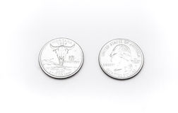 Primer a Montana State Symbol en moneda del dólar cuarto en el fondo blanco Fotos de archivo libres de regalías
