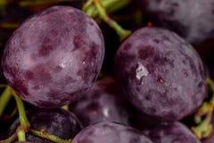 Primer oscuro de las uvas Imagen de archivo libre de regalías