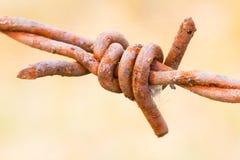 Primer oxidado viejo del alambre de púas Fotografía de archivo libre de regalías