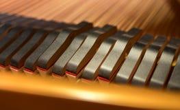 Primer principal de los apagadores del piano Imágenes de archivo libres de regalías