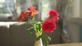 Primer Ramo lindo de rosas rojas y de fresia en un florero en una tabla en un d?a de verano soleado en un caf? metrajes