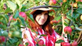 Primer, retrato del granjero de la mujer o agrónomo que lleva un sombrero, escogiendo manzanas en granja en huerta, en día solead metrajes