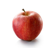 Primer rojo de la manzana en el fondo blanco Foto de archivo libre de regalías
