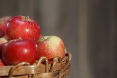 Primer rojo de las manzanas Fotos de archivo