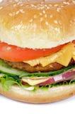 Primer sabroso de la hamburguesa Imagen de archivo libre de regalías