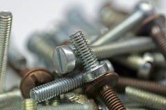 Primer Silvern de los tornillos Fotografía de archivo libre de regalías