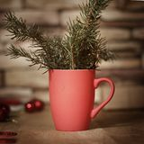 primer Taza de la Navidad con las ramas del abeto Foto con el espacio de la copia Imagen de archivo libre de regalías