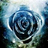 Primer Textured del adorno de Rose del metal Fotografía de archivo