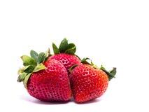 Primer tirado de fresas frescas Aislado en el fondo blanco Foto de archivo libre de regalías